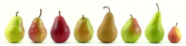 Tipos de peras