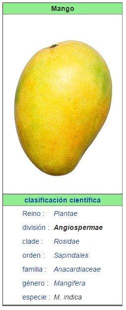 caracteristicas del mango