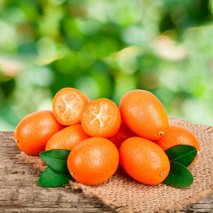 Kumquat fruto