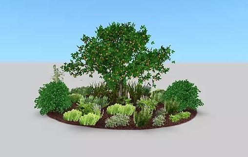 Cómo construir un gremio de árboles frutales