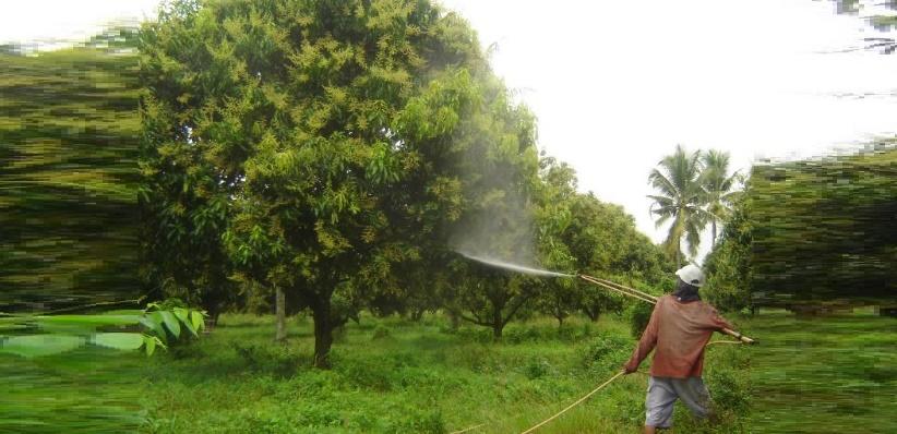 Pulverizaciones foliares para árboles frutales